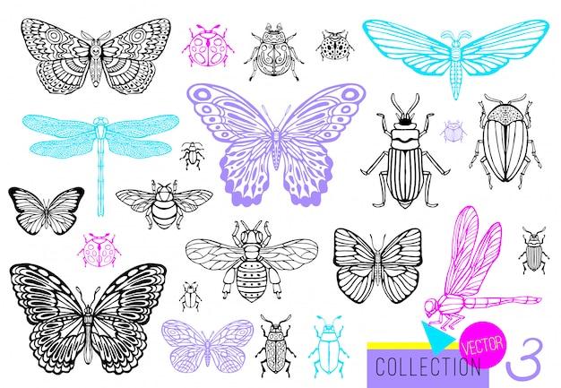 Große handgezeichnete linie satz von insektenwanzen, käfern, honigbienen, schmetterling; motte, hummel, wespe, libelle, heuschrecke. gravierte illustration des silhouette-weinlese-skizzenstils. Premium Vektoren