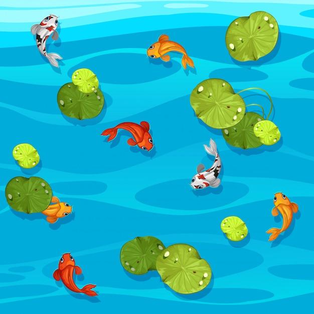 Große koi fische im teich Premium Vektoren