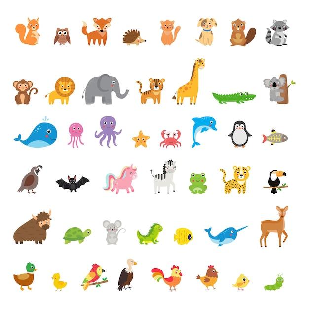 Große menge verschiedener tiere und vögel im cartoon-stil Premium Vektoren