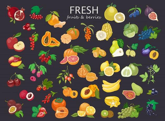 Große reihe von farbigen früchten und beeren. Premium Vektoren