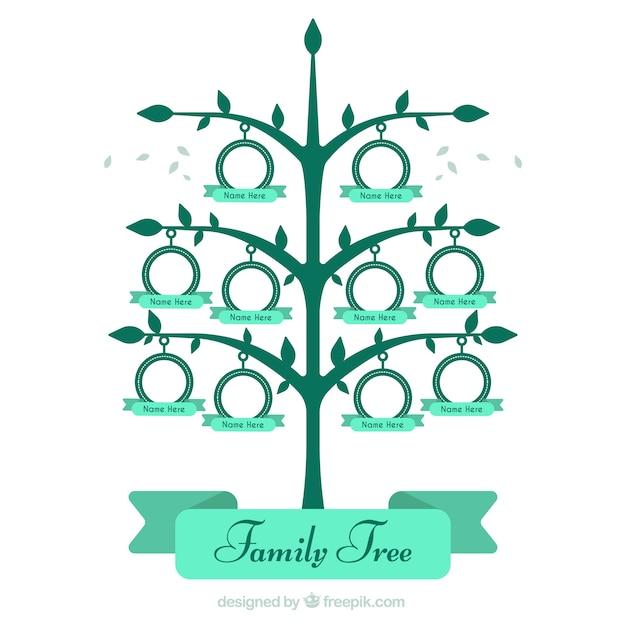 Große stammbaum in den grünen tönen Kostenlosen Vektoren