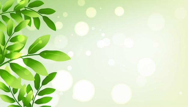 Grün hinterlässt hintergrund mit copyspace Kostenlosen Vektoren