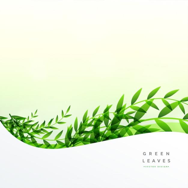 Grün lässt hintergrund mit textraum Kostenlosen Vektoren