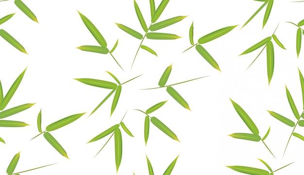 Grüne bambusblätter Premium Vektoren