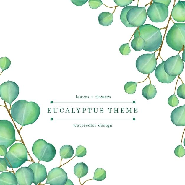 Grüne eukalyptus-aquarellillustration Premium Vektoren