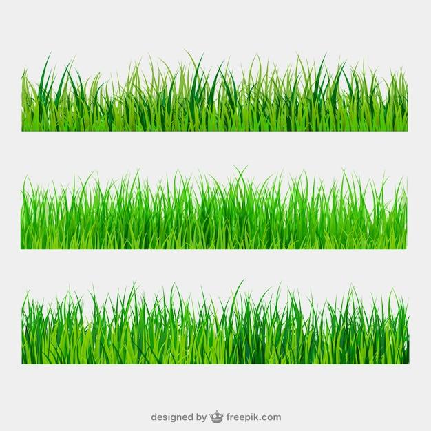 Grüne gras grenzen Premium Vektoren