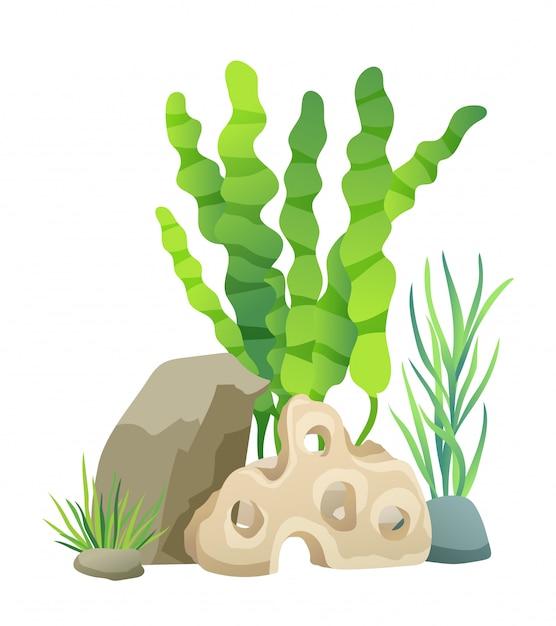Grüne vegetation der tiefsee-vektor-illustration Premium Vektoren