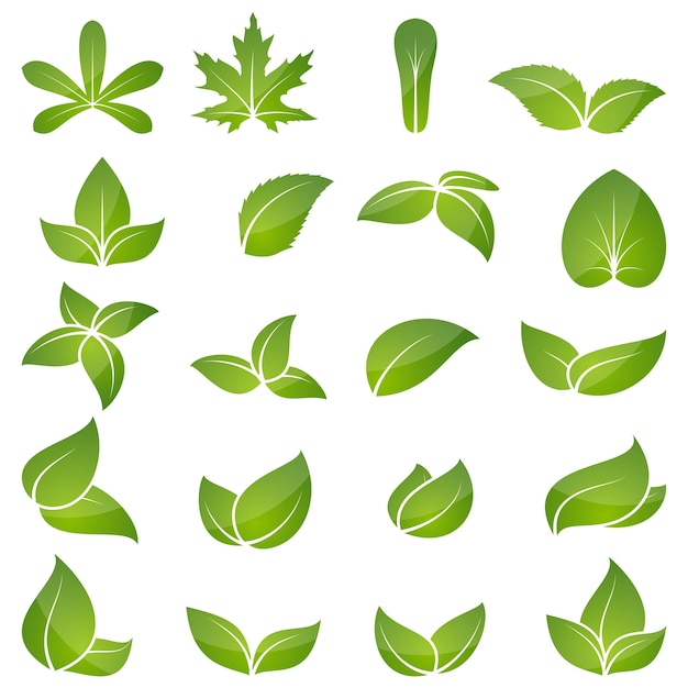 Grüner blattikonensatz Premium Vektoren