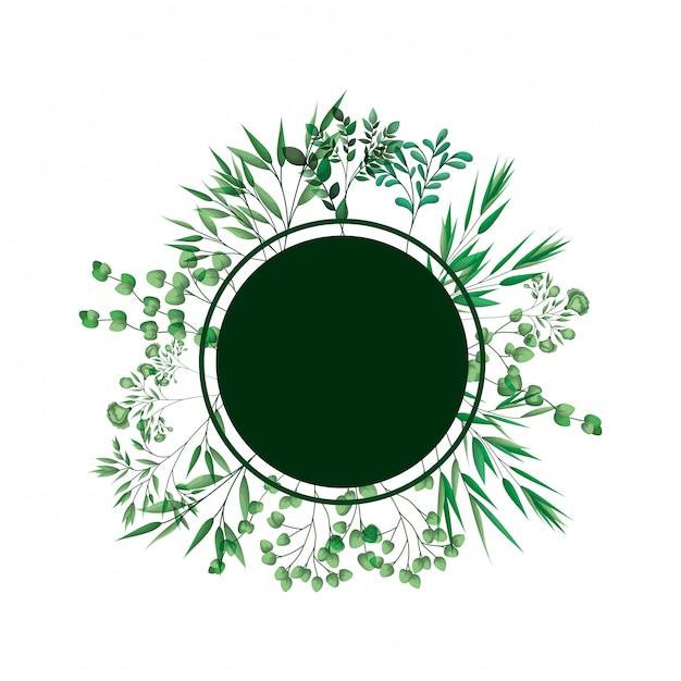 Grüner rahmen mit zweigen und blättern Premium Vektoren