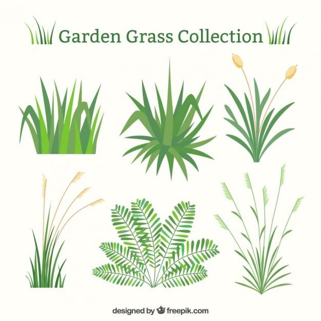 Grünes gras-set in flaches design Kostenlosen Vektoren