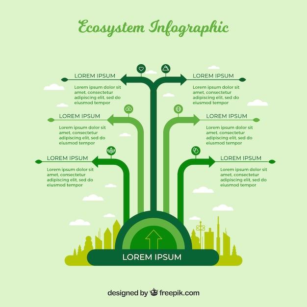 Grünes infographic ökosystemkonzept Kostenlosen Vektoren