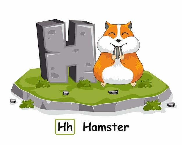 H für hamstertiere rock stone alphabet Premium Vektoren