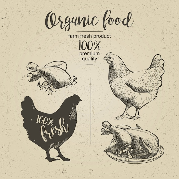 Hähnchen. gebratenes hühnchen Premium Vektoren