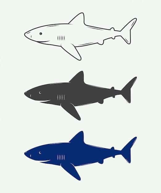 Haie für logos Premium Vektoren