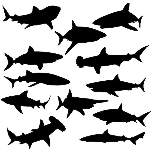 Haifisch-wasser-tier-clip art silhouette vector Premium Vektoren