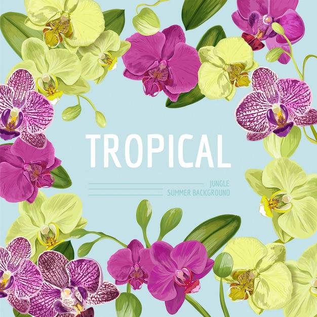 Hallo sommer tropic design. tropische orchidee blüht hintergrund für plakat Premium Vektoren