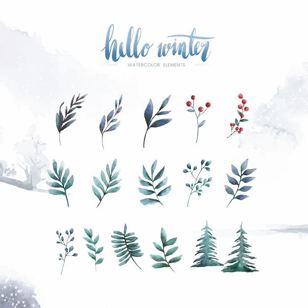 Hallo winteranlagen und -blumen gemalt durch aquarellvektor Kostenlosen Vektoren