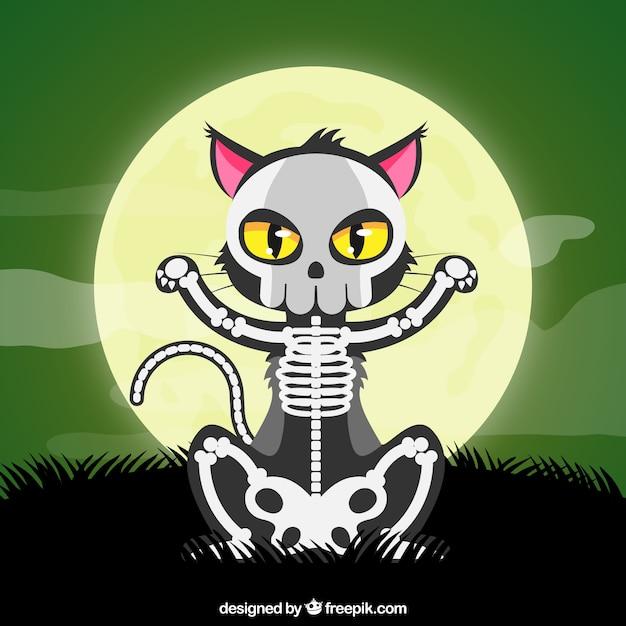 Halloween Katze mit Skelett | Download der kostenlosen Vektor