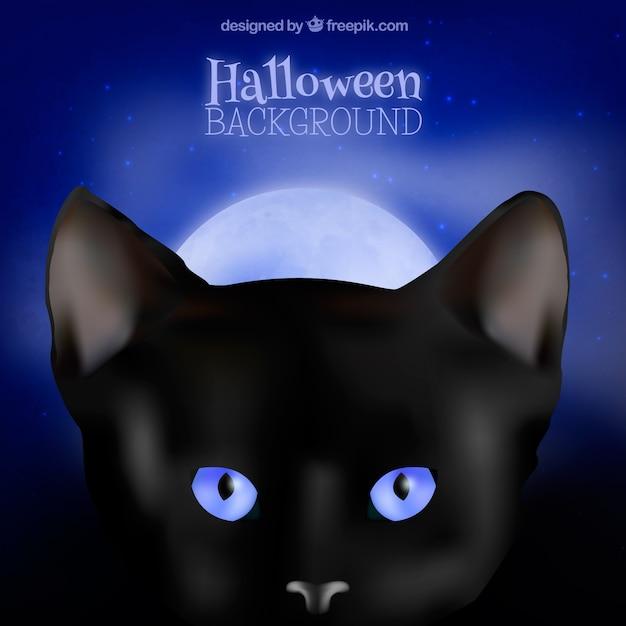 halloween schwarze katze hintergrund mit blauen augen download der kostenlosen vektor. Black Bedroom Furniture Sets. Home Design Ideas