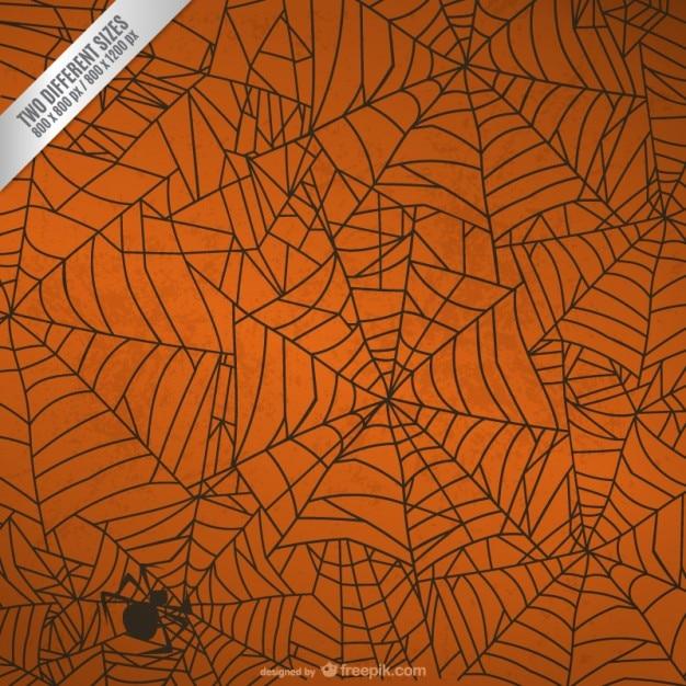 halloween spinnennetz hintergrund download der kostenlosen vektor. Black Bedroom Furniture Sets. Home Design Ideas