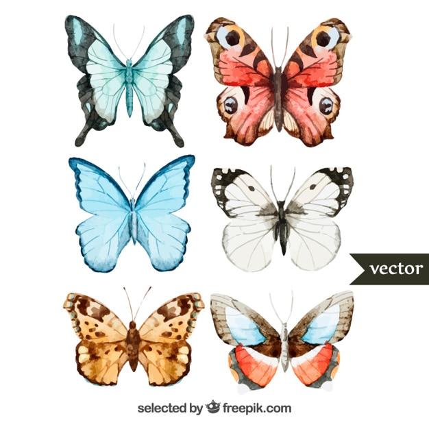 Hand gemalte Schmetterlinge Kostenlose Vektoren