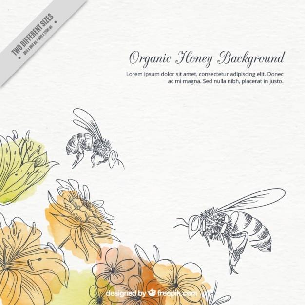 Hand gezeichnet aquarell blumen und bienen hintergrund Kostenlosen Vektoren