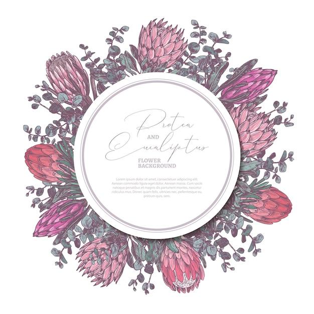 Hand gezeichnet mit protea und eukalyptus mit kreisetikett oder tag-illustration Premium Vektoren