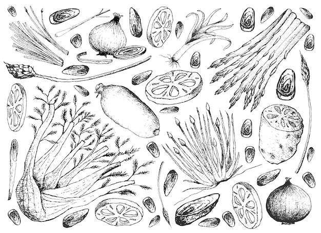 Hand gezeichnet von birnen- und stamm-gemüse-hintergrund Premium Vektoren