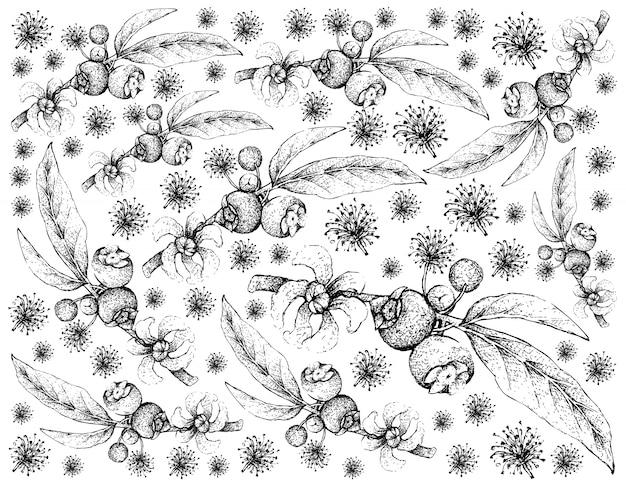 Hand gezeichnet von goiaba de anta früchte hintergrund Premium Vektoren