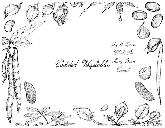 Hand gezeichnet von podded vegetables frame Premium Vektoren