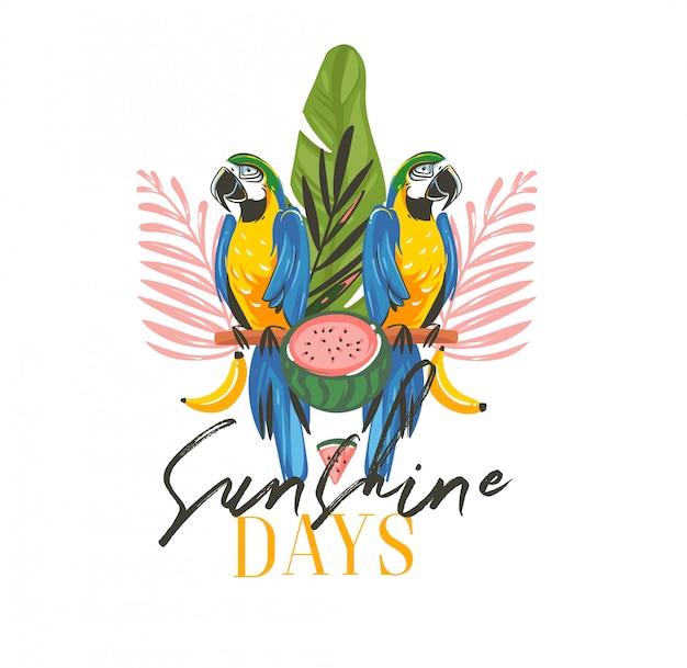 Hand gezeichnete abstrakte karikatur-sommerzeit-grafikillustrationen mit exotischem tropischem zeichen mit regenwald-papageien-ara-vögeln, wassermelone und sonnenschein-tagestext auf weißem hintergrund Premium Vektoren