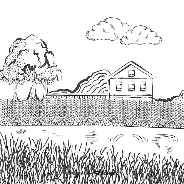 Hand gezeichnete bauernhoflandschaft Kostenlosen Vektoren
