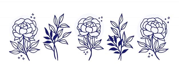 Hand gezeichnete botanische blumenlogoelemente Premium Vektoren