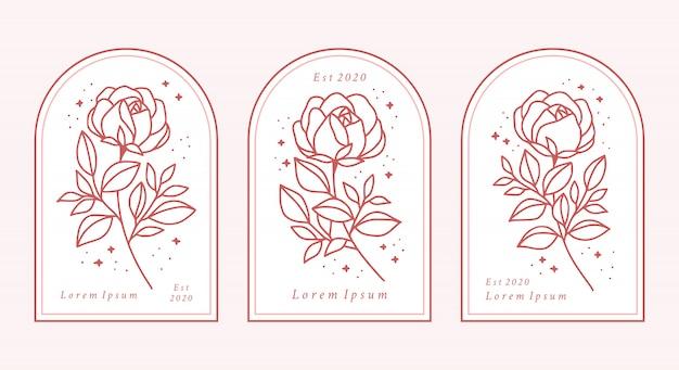 Hand gezeichnete botanische rosenblumenlogoelementsammlung Premium Vektoren