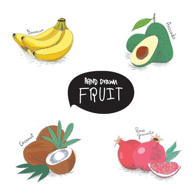 Hand gezeichnete fruchtgestaltungselemente Premium Vektoren