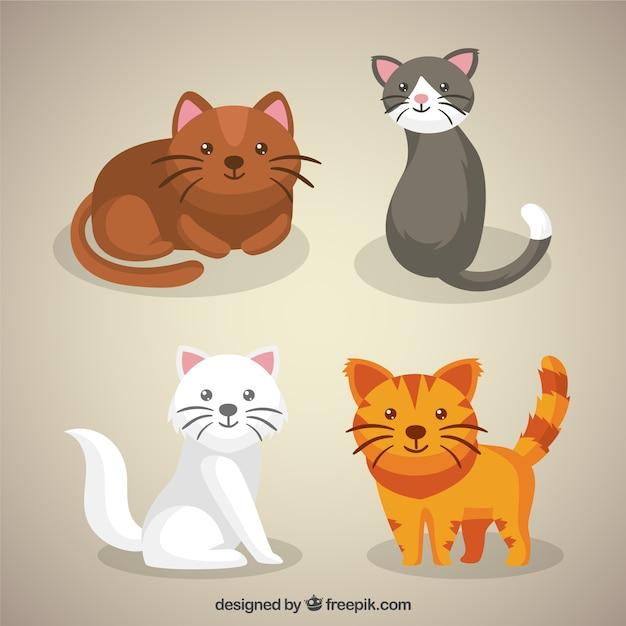 internetseite registrieren kostenloser cat
