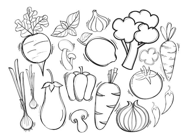 Hand gezeichnete illustration mit organischem gemüse des vektors Premium Vektoren