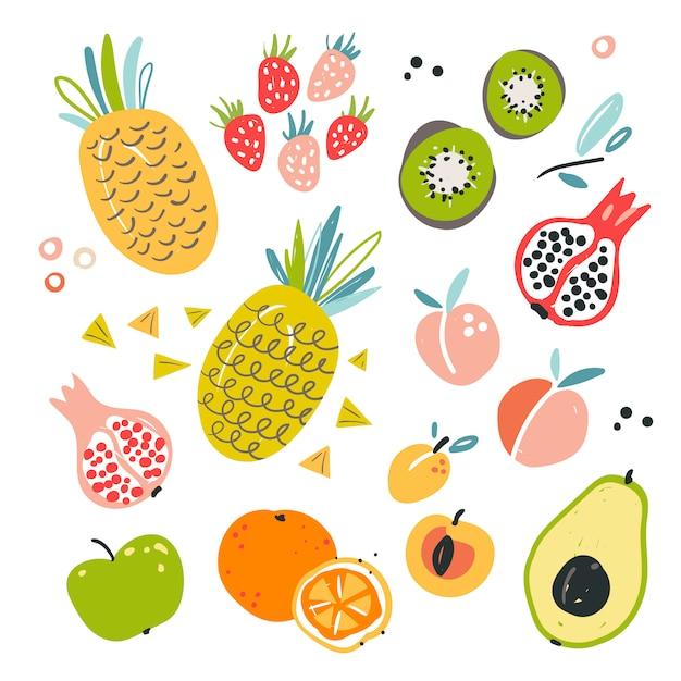 Hand gezeichnete illustration von verschiedenen fruchtbestandteilen. Premium Vektoren
