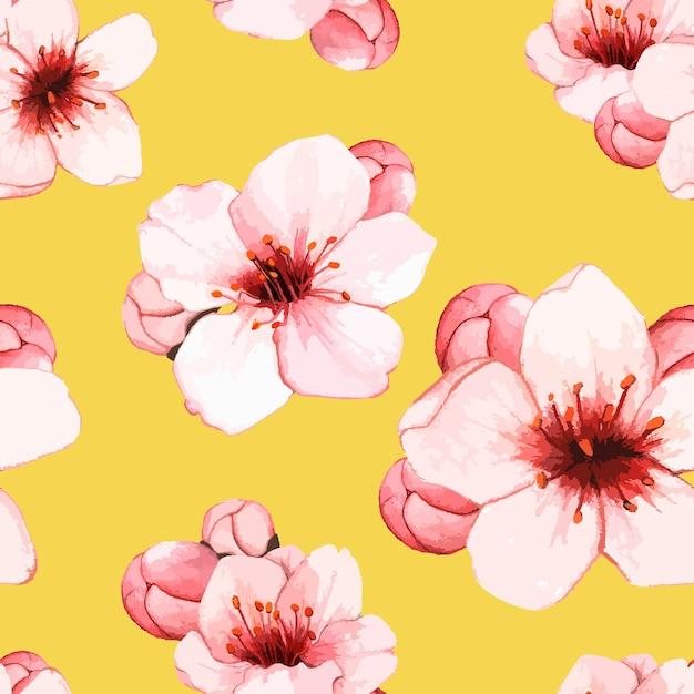 Hand gezeichnete kirschblütenblume lokalisiert Kostenlosen Vektoren