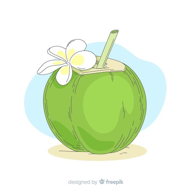 Hand gezeichnete kokosnussillustration Kostenlosen Vektoren