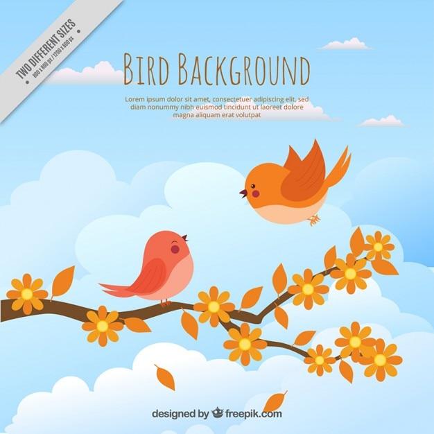 Hand gezeichnete nette vögel auf einem zweig hintergrund Kostenlosen Vektoren