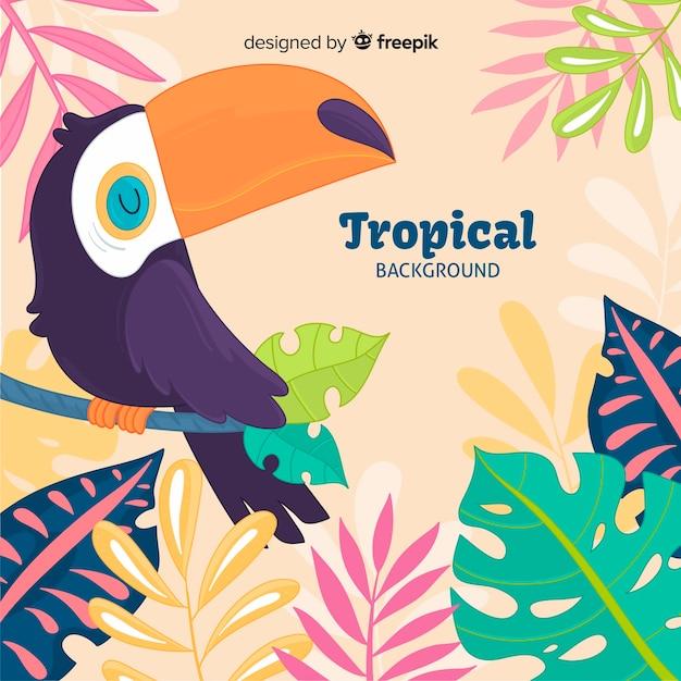 Hand gezeichnete tropische anlagen und vogelhintergrund Kostenlosen Vektoren