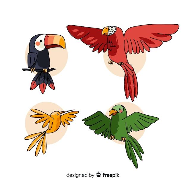 Hand gezeichnete tropische vogelsammlung Kostenlosen Vektoren