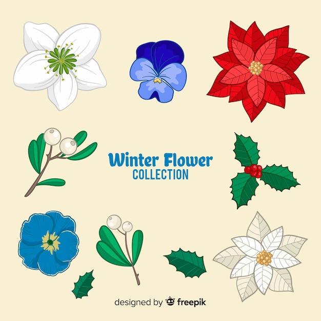 Hand gezeichnete winterblumensammlung Kostenlosen Vektoren