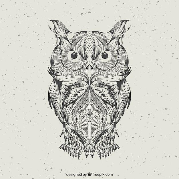 single owl kostenlos Flensburg