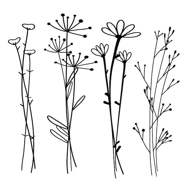 Hand gezeichneter botanischer satz, gekritzelflorenelement, vektorillustration. Premium Vektoren