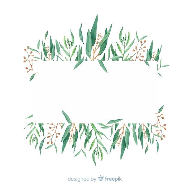 Hand gezeichneter eukalyptus verzweigt sich hintergrund mit leerstelle Kostenlosen Vektoren