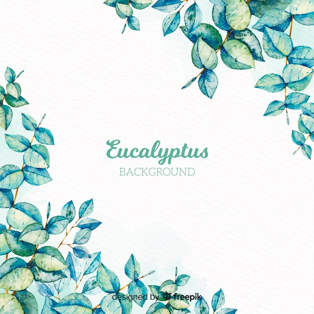 Hand gezeichneter eukalyptuszweighintergrund Kostenlosen Vektoren