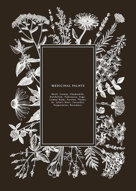Hand gezeichneter heilkräuterrahmen auf tafel. blumen, unkraut und wiesen skizzen. weinlese-sommerpflanzenschablone. botanischer hintergrund mit floralen elementen im gravierten stil. Premium Vektoren