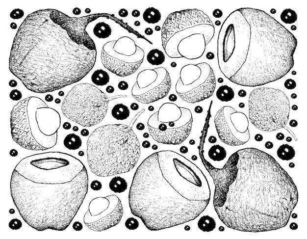 Hand gezeichneter hintergrund von litschi-und kokosnuss-früchten Premium Vektoren